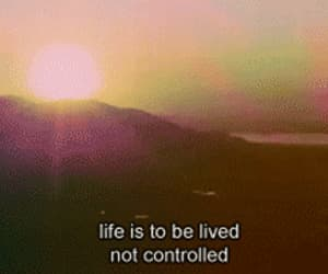 life, quotes, and gif image