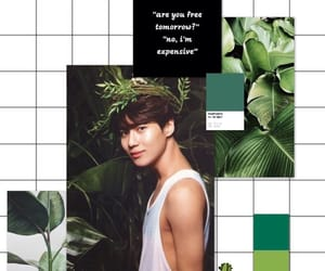 background, Taemin, and minho image