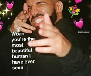 affection, meme, and memes image