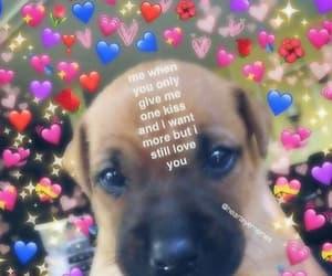 meme, love, and dankmeme image