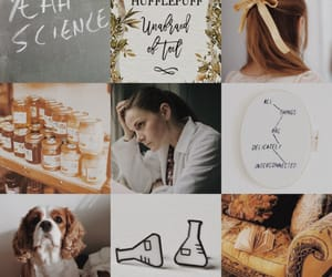 aesthetic, harry potter, and sherlock image