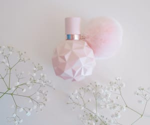 beauty, flowers, and perfume image