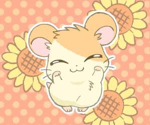 hamtaro, kawaii, and hamster image
