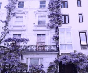 purple, house, and flowers image