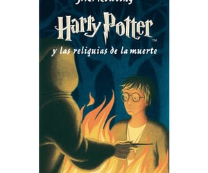 harry potter, the deathly hallows, and hermione granger image