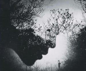 blackandwhite and tree image