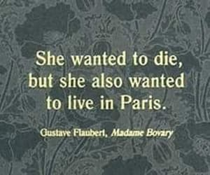 french, literature, and madame bovary image