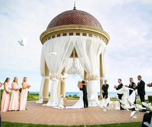 wedding planner whitby, event planner whitby, and party planner whitby image
