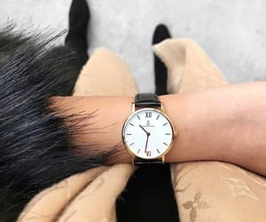 accessories, fashion, and fur image