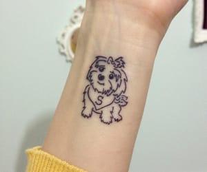 dog, shih tzu, and tattoo image