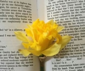 yellow, flowers, and book image