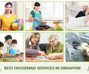 best maid singapore, singapore maid, and singapore maid search image