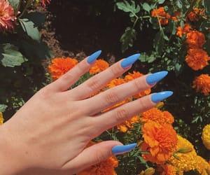flowers, nails, and orange image