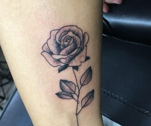 new, rose, and tattoo image