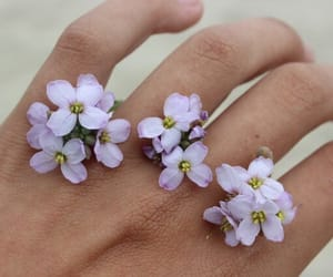 flowers, hand, and purple image
