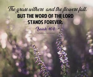 flowers and bible verse image