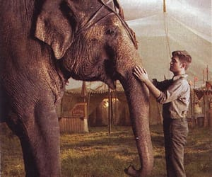 elephant, reese whiterspoon, and water for elephants image