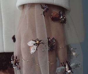 fashion, bee, and dior image