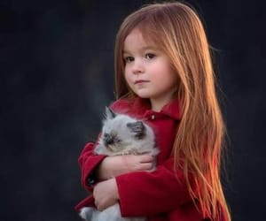 baby, feliz, and gato image