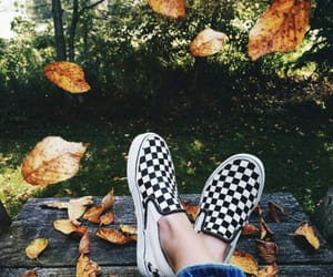 fall, vans, and autumn image