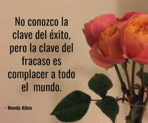 frases, peach, and rosas image