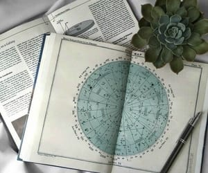 book, plants, and alternative image