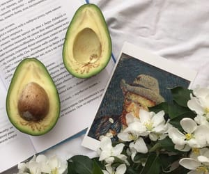 avocado, book, and fit image