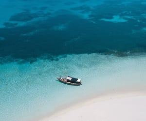 belleza, naturaleza, and mar image
