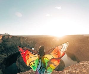 arizona, butterfly, and colors image