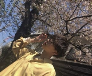 boy, cherry blossoms, and model image