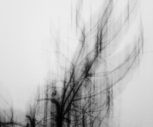 black, black and white, and dark image