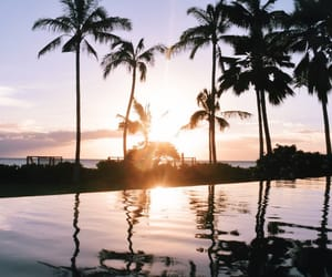 beach, chill, and hawaii image