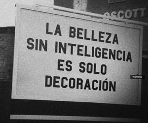 frases, beauty, and inteligencia image