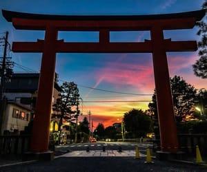 japan, 日本, and 神社 image