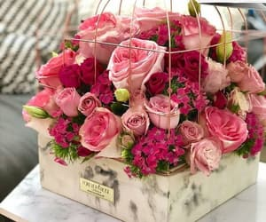 chic, flowers, and roses image