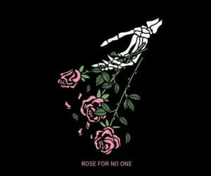 rose, black, and wallpaper image