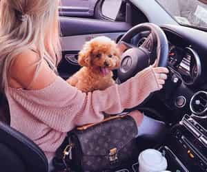 dog, girl, and car image