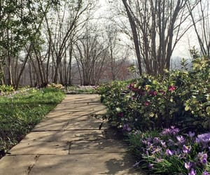 garden, path, and spring image