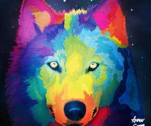 animals, colours, and wolf image