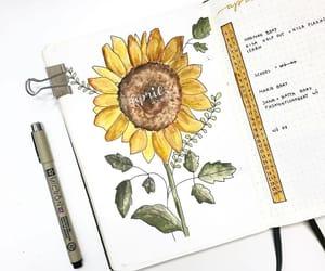 art, sunflower, and bujo image