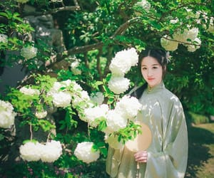 china, chinese, and flowers image