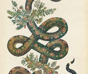snake, art, and green image