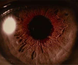 eye, gif, and eyes image