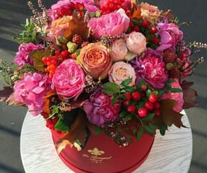 accessories, bouquet, and box image