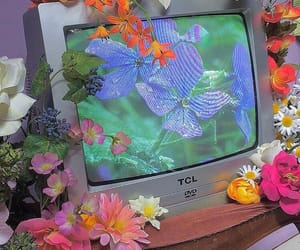flowers, tv, and aesthetic image