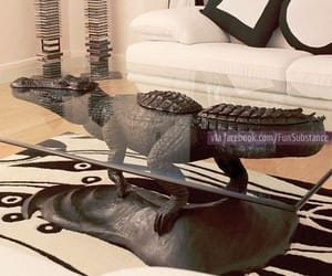 alligator, awesome, and funny image