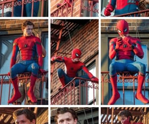 homecoming, Marvel, and tom holland image