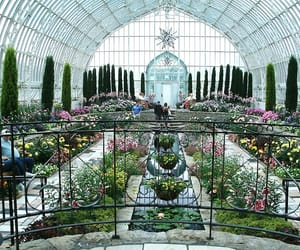 conservatory, minnesota, and plants image