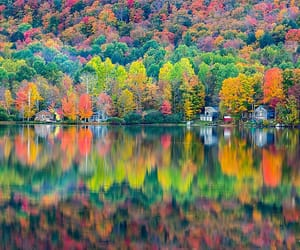 autumn, usa, and vermont image