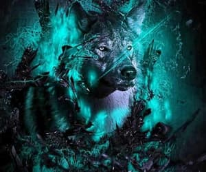 wolves and wallpaper image